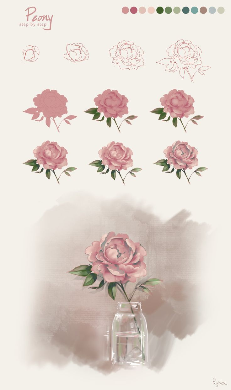 Drawn peony tutorial PART Best on Nature ideas