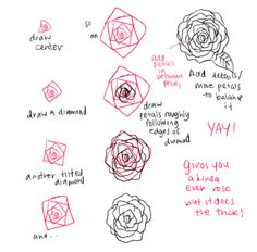 Drawn peony tutorial To • arrangements/ How peonies