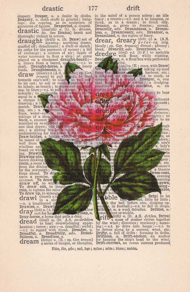 Drawn peony vintage Book Page Vintage flower Pinterest