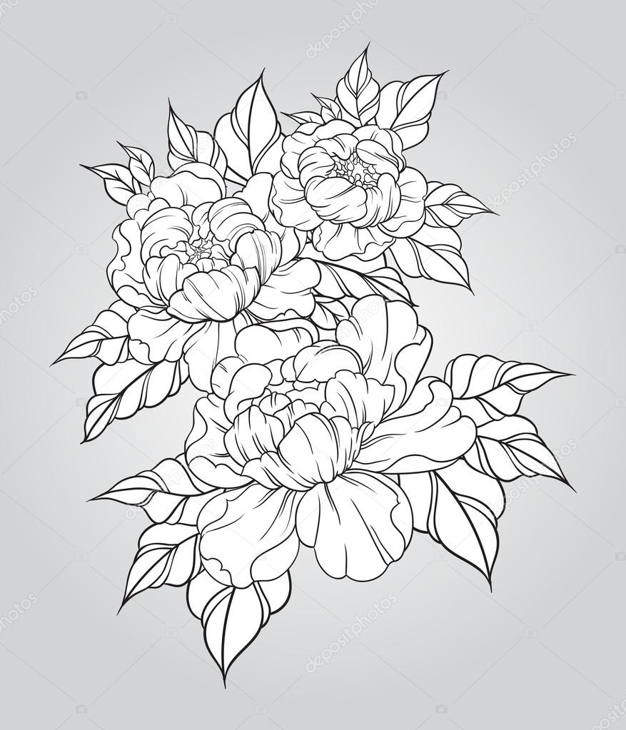 Drawn peony vintage floral Japanese Hand japanese traditional —