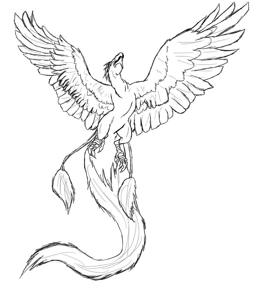 Drawn phoenix Phoenix by 01 Death Death
