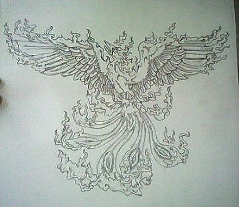 Drawn phoenix And (15393824) sign Drawing Phoenix