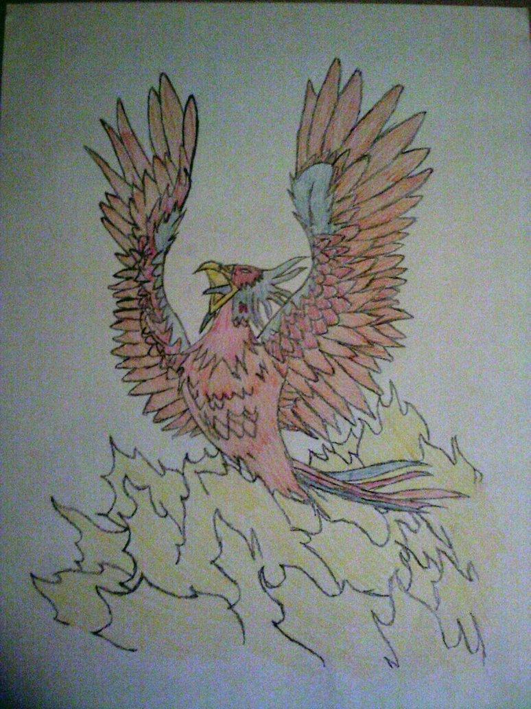 Drawn phoenix By DeviantArt on Drawn Drawn