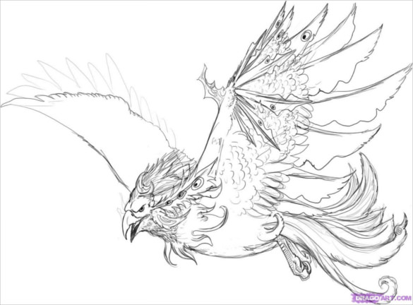 Drawn phoenix & 21+ Phoenix Blowing Bird