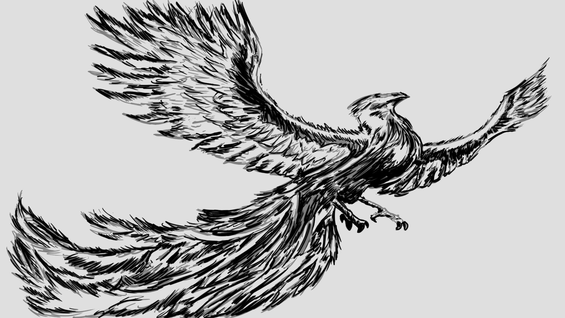 Drawn phoenix Drawn Griffin Griffin (Original – Drawing) AlexShawAnimation