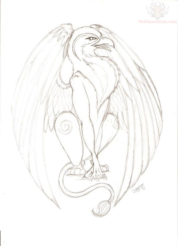 Drawn phoenix Drawn Griffin Tattoo Drawings  Griffin Drawing
