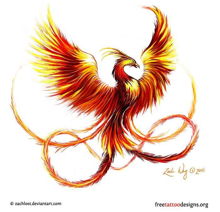 Drawn phoenix Phoenix Bird Phoenix ideas Pinterest bird design