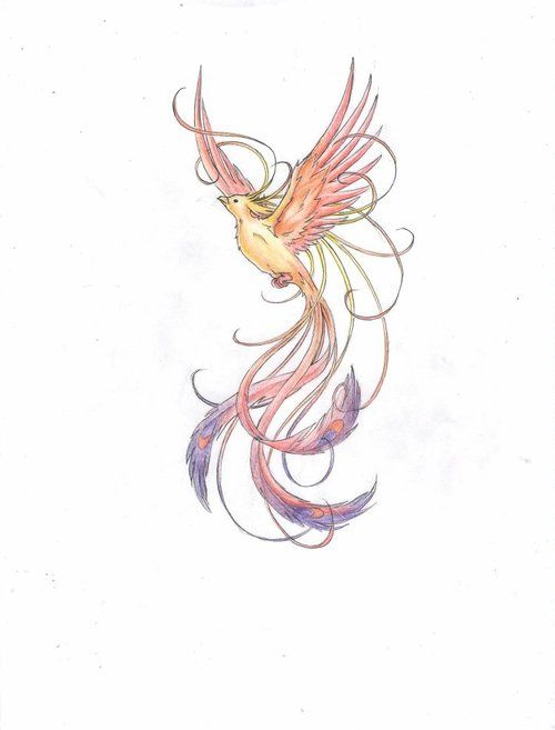 Drawn phoenix Phoenix Bird Include: and More drawing for