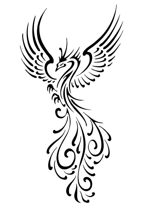 Drawn phoenix Phoenix Bird Flourish Looks Flourish  drawing
