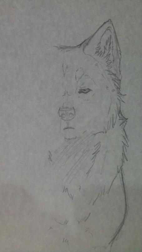 Drawn photos half Half by Ouivon by have
