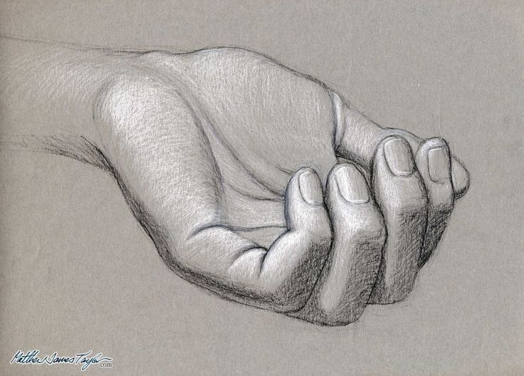 Drawn amd charcoal Draw rendered charcoal drawings hands