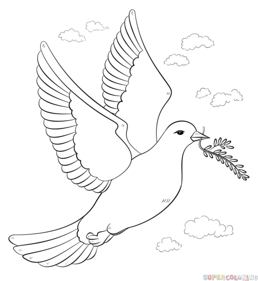 Drawn pice dove Peace with a a by