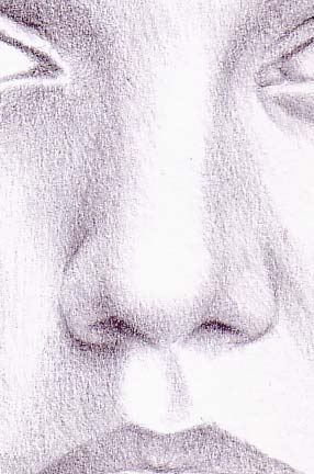 Drawn amd nose Drawing nose dessin nose Pinterest