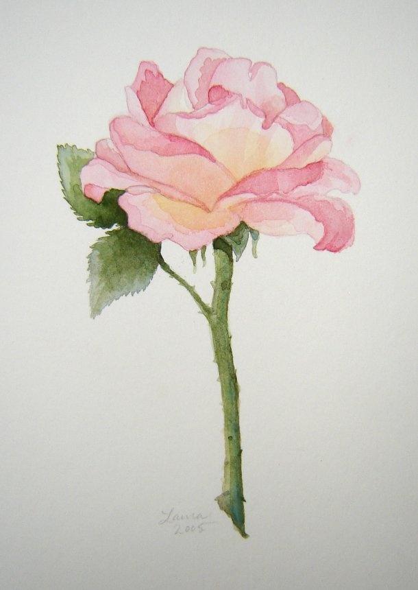 Drawn pice rose Best Watercolor Watercolor FlowersDrawing drawings