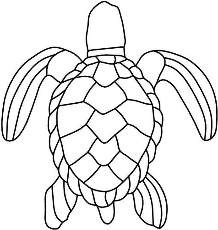 Drawn sea turtle pattern Green Pinterest Inch Clay 25+