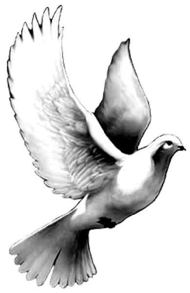 Drawn pigeon religious Designs Pinterest Tattoo The on