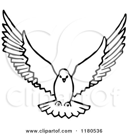 Pidgeons clipart holy spirit Dove drawing 25+ on Flying
