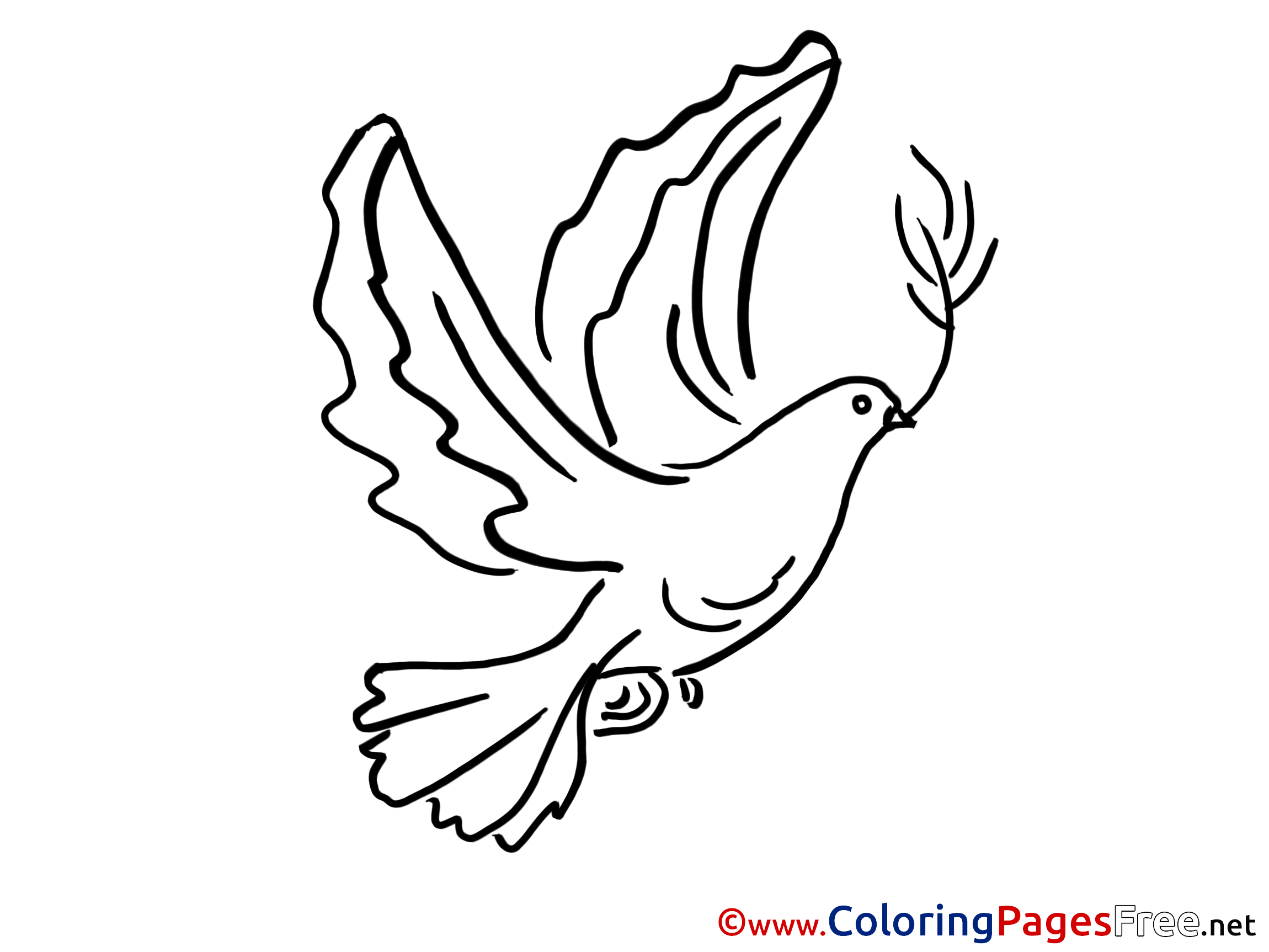 Drawn pigeon pentecost  Pigeon Sheets Coloring free