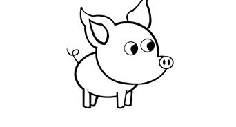 Drawn pig Draw 14 (with to a