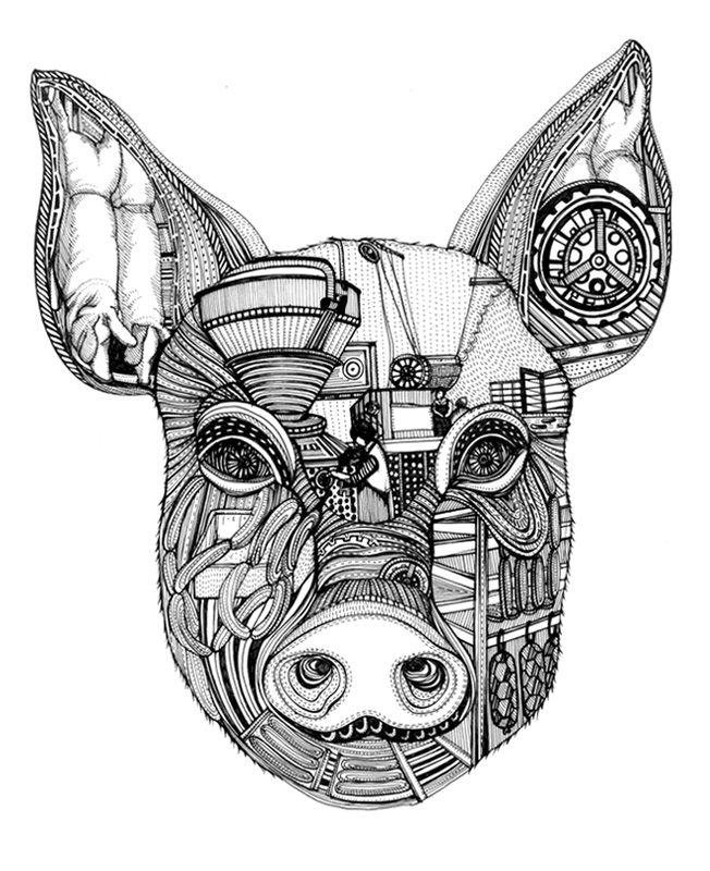 Drawn pig Drawn Cow Pig art Cow and ying
