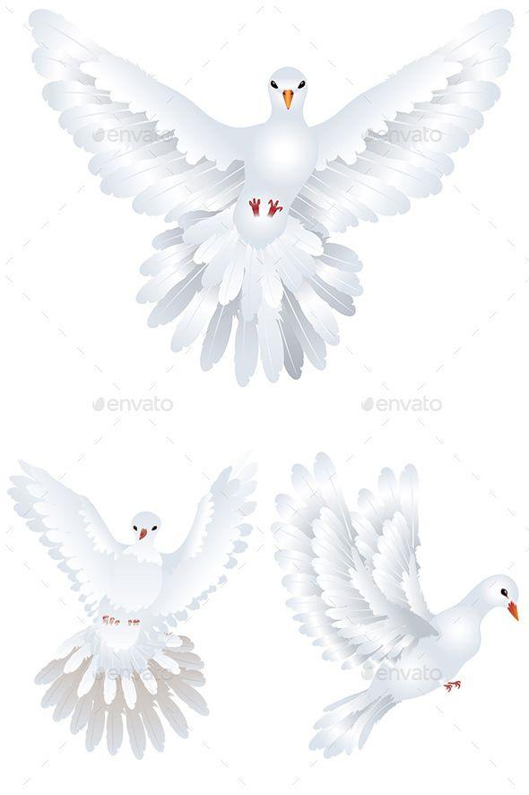 Drawn pigeon religious The Pigeon 25+ Pinterest on