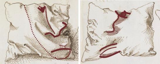 Drawn pillow durer Diagrammatic Dürer's Six Dürer's details