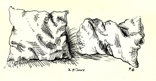 Drawn pillow durer  Gilbert Pete Two Pillows