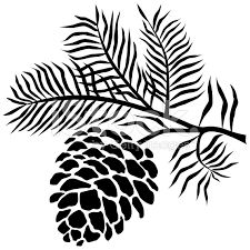 Drawn pine cone  Kentucky Silhouetted result Image