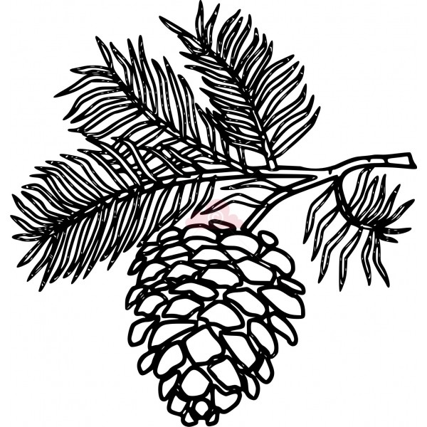 Pine Cone clipart vector Silhouetted Kentucky Cone Patterns Stencil