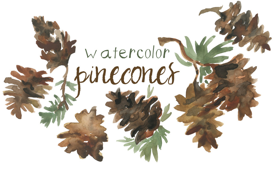 Pine Cone clipart watercolor Autumn Illustration Holiday Fall Instant