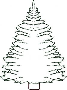 Drawn pine tree #1