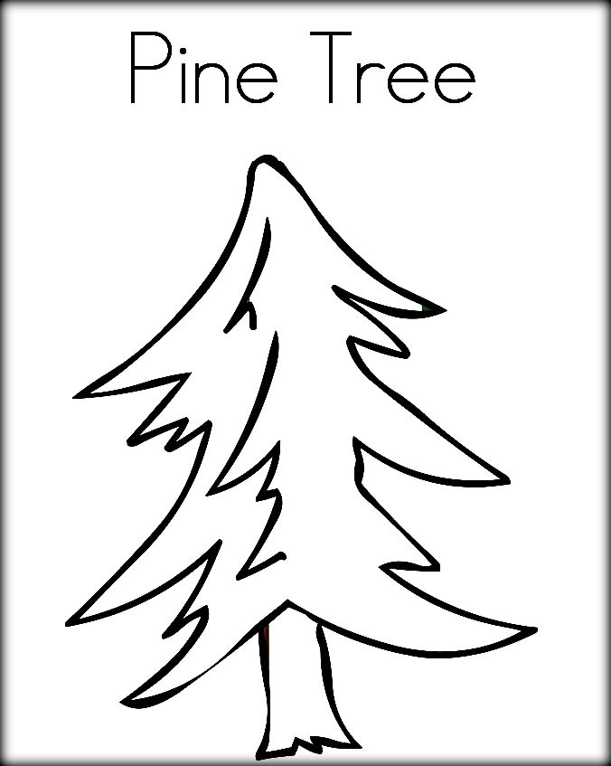 Drawn pine tree child Coloring & pages Coloring Book