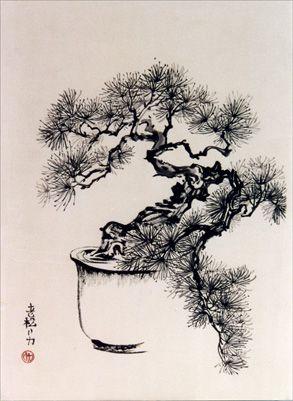Drawn pine tree japanese 73 images best on Pinterest