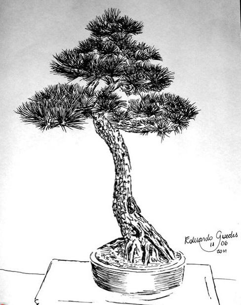 Drawn pine tree japanese Black (Your pine? Bonsai) Bonsai