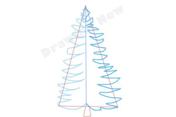 Drawn pine tree step by step Tree to Draw Tree How