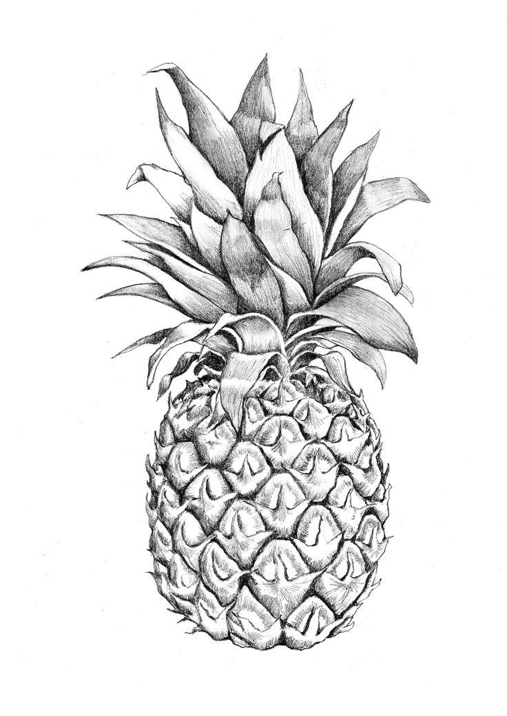 Drawn pineapple #4