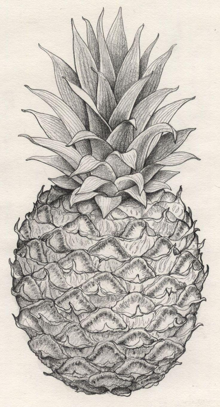 Drawn pineapple #8