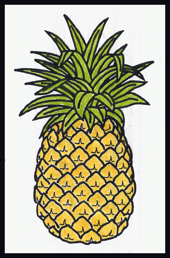Drawn pineapple F769189f2e9ea98c30f9b008de8d4e2f  A Drawing Pages