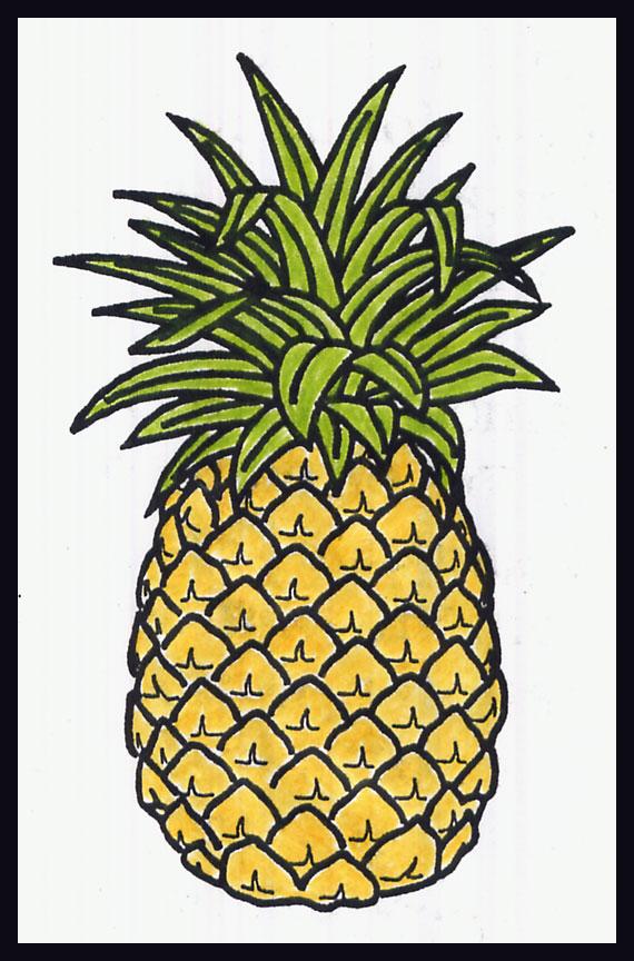 Drawn pineapple #9