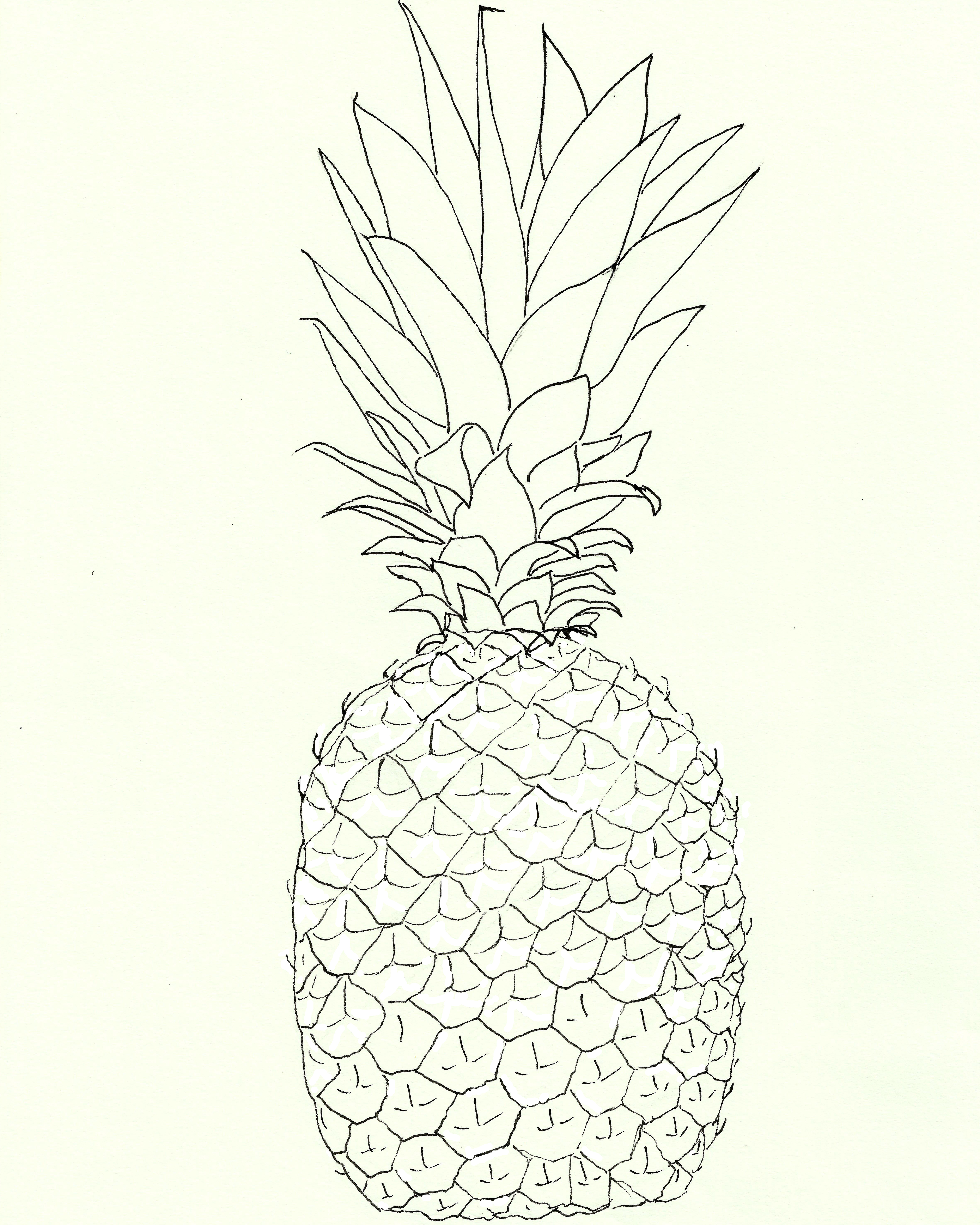 Drawn pineapple #11