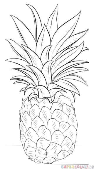 Drawn pineapple #6