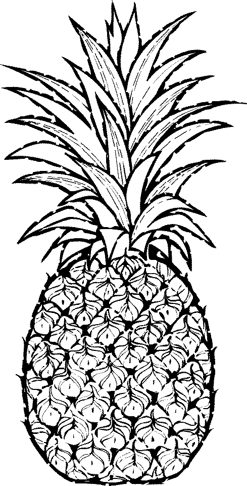 Monochrome clipart pineapple Org Related Fruit art DownloadClipart