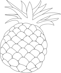 Apple clipart outline png Art Clip Drawing Art Pineapple