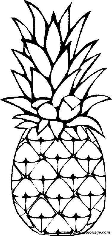 Color clipart pineapple Suggestions & Pineapple  Drawing