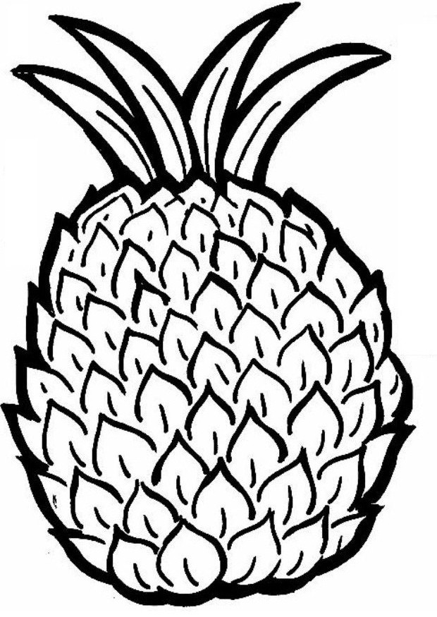 Color clipart pineapple Pineapple inside Coloring drawing Page