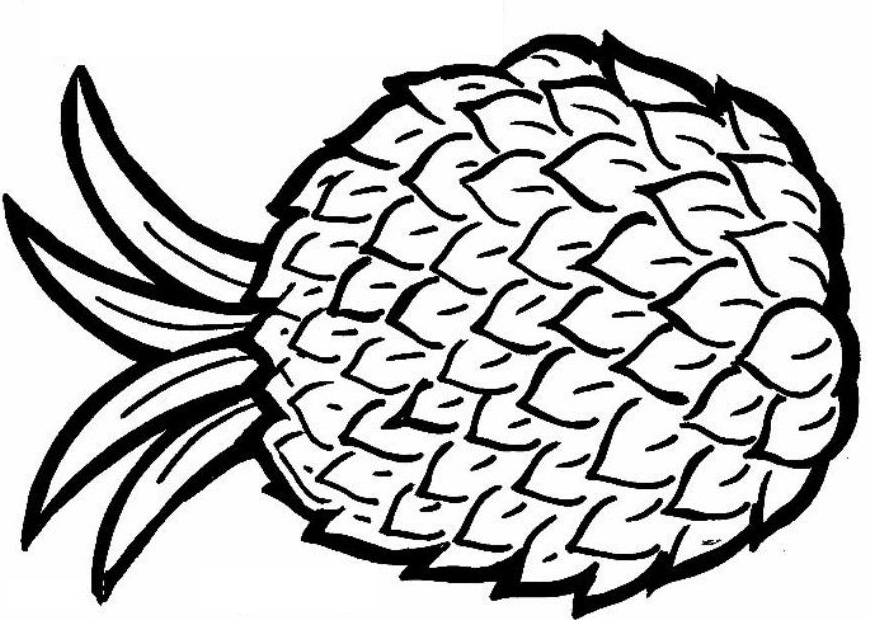 Color clipart pineapple Drawing Page pineapple pages colouring