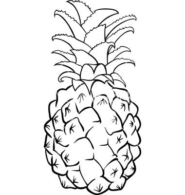 Color clipart pineapple Igor_Zakowski by on Pineapple VectorStock®