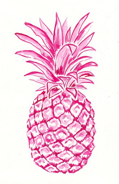 Drawn pineapple Best illustration on Print Pineapple