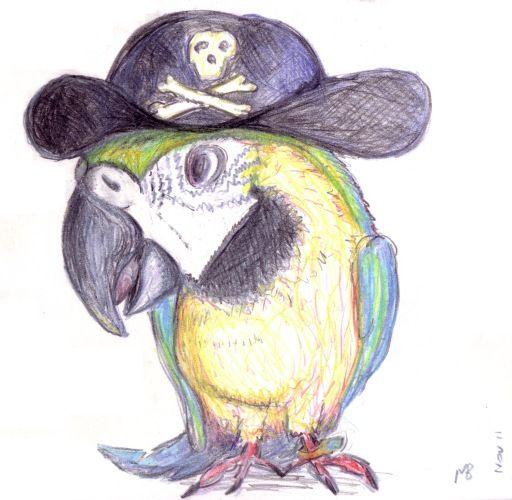 Drawn pirate sketch Sketch on pirates pirate best