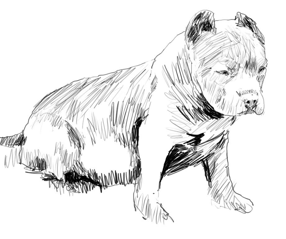 Drawn pit bull YouTube Puppy Draw A To